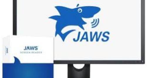JAWS-Crack-1